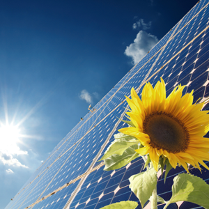 solar grants min